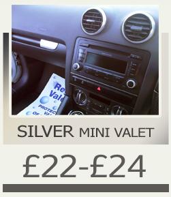 mini_silver copy